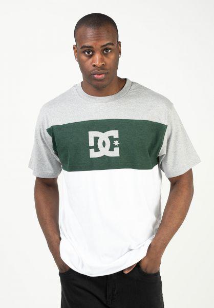 DC Shoes T-Shirts Glen End white vorderansicht 0322359
