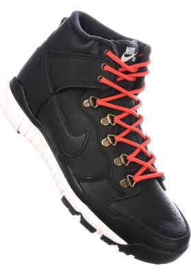 Nike SB Alle Schuhe Dunk Hi R/R