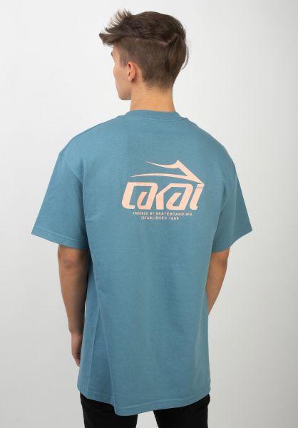 Lakai T-Shirts Inspired slate vorderansicht 0398928