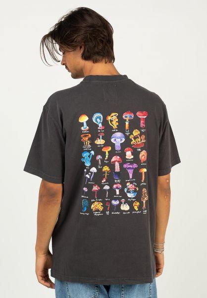 Element T-Shirts Shrooms Guide offblack vorderansicht 0324334