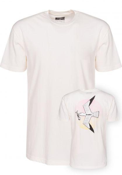 Altamont T-Shirts Trash Gull dirtywhite Vorderansicht