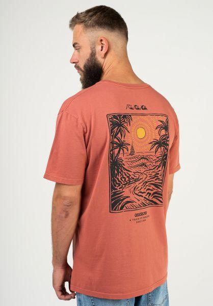 Quiksilver T-Shirts Silent Dusk cinnamon vorderansicht 0324390