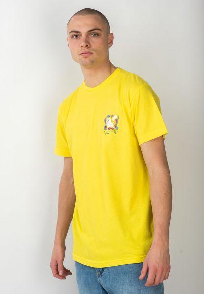Rip N Dip T-Shirts Catch Em´ All yellow vorderansicht 0320769