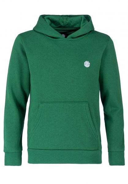 Element Hoodies Cornell Kids verdantgreen vorderansicht 0445995