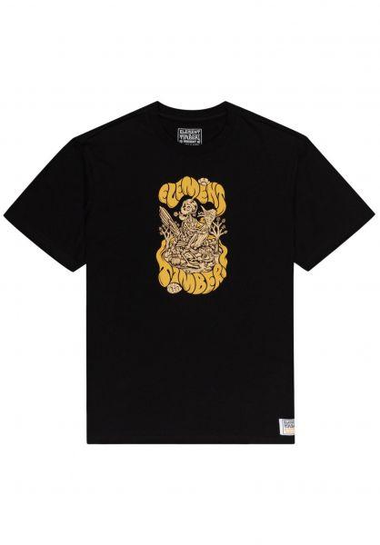 Element T-Shirts x Tmber The Trip flintblack vorderansicht 0323338