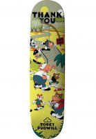 thank-you-skateboards-skateboard-decks-pudwill-skate-oasis-multicolored-vorderansicht-0266242