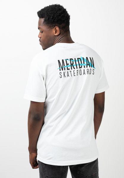 Lakai T-Shirts x Meridian City white vorderansicht 0321198