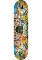 dgk-skateboard-decks-fagundes-ghetto-fab-multicolored-vorderansicht-0269288
