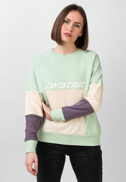Santa-Cruz Sweatshirts und Pullover Frame multi vorderansicht 0422859