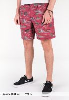 Element Shorts Arrowrock WK riverratsred Vorderansicht