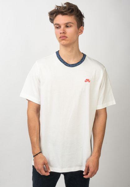 Nike SB T-Shirts Nordic Rib sail-obsidian vorderansicht 0321123