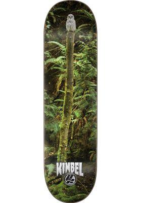 Creature Kimbel Spirit Owl P2