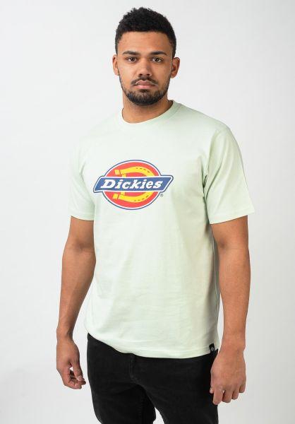 Dickies T-Shirts Horseshoe mint vorderansicht 0361497