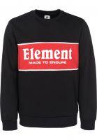 Element Sweatshirts und Pullover Primary flintblack Vorderansicht