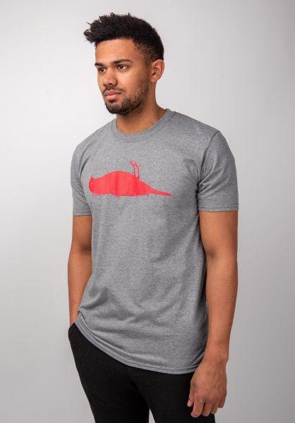 Atticus T-Shirts Bird heathergraphite vorderansicht 0370254
