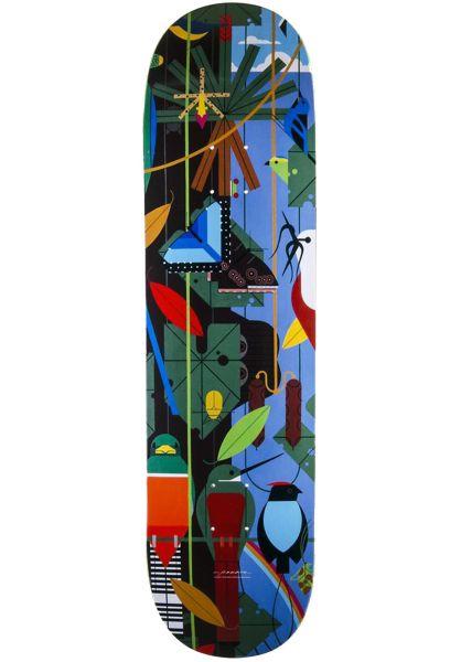Habitat Skateboard Decks x Harper Monteverde LRG multicolored vorderansicht 0263288