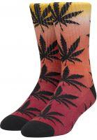 huf-socken-plantlife-gradient-dye-red-vorderansicht-0631760