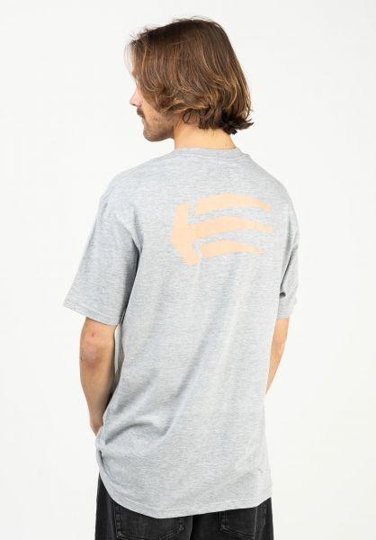 etnies T-Shirts Joslin grey-pink vorderansicht 0321219