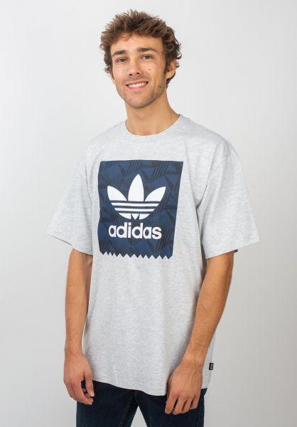 adidas-skateboarding T-Shirts Blackbird Print lightgreyheather-black-collegiatenavy-white vorderansicht 0320656