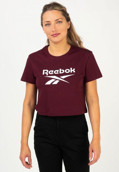 Reebok T-Shirts CL F Big Logo maroon vorderansicht 0322277