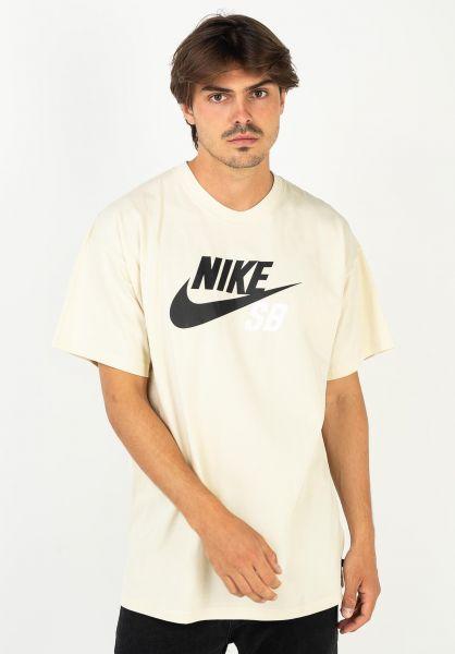 Nike SB T-Shirts DFT Icon Logo fossil vorderansicht 0394809