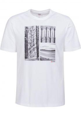Element Redwood