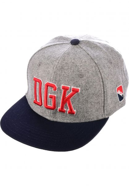 DGK Caps Fly Ball athleticheather Vorderansicht