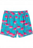 Lousy-Livin-Unterwaesche-Flamingos-blue-pink-Vorderansicht
