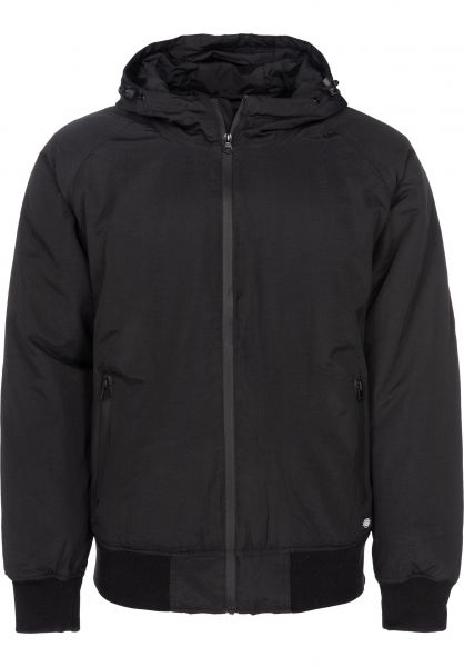 Dickies Winterjacken Fort Lee black Vorderansicht