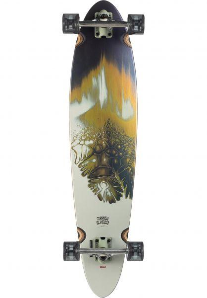 Globe Longboards komplett Pinner Classic gold-vein vorderansicht 0195328