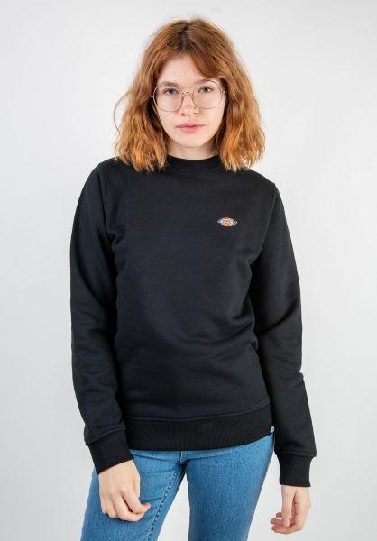 Dickies Sweatshirts und Pullover Seabrook black vorderansicht 0422545
