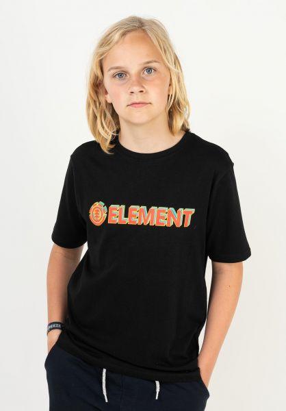 Element T-Shirts Blazin 3D Kids flintblack vorderansicht 0323407