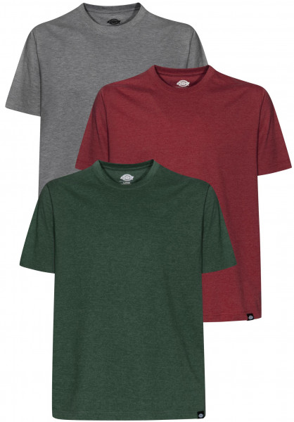 Dickies T-Shirts Hastings assorted Vorderansicht
