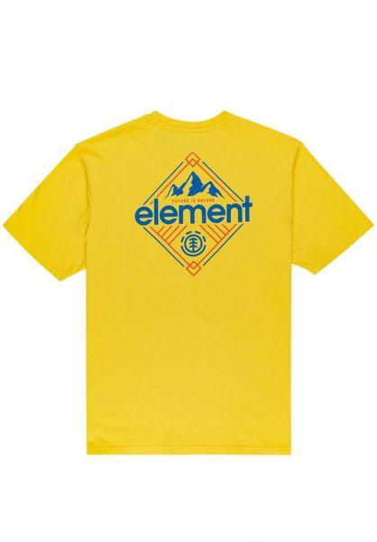 Element T-Shirts Duggar dandelion vorderansicht 0323366