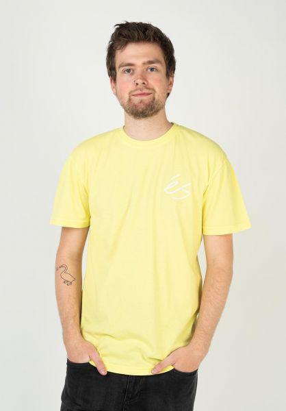 ES T-Shirts Script Overdye lightgreen vorderansicht 0323625
