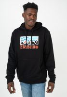 element-hoodies-wander-flintblack-vorderansicht-0446095