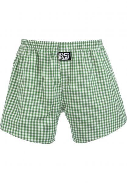 Fourasses Unterwäsche Plaid lightgreen vorderansicht 0213308
