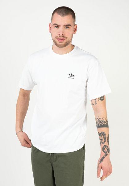 adidas-skateboarding T-Shirts 2.0 Logo white vorderansicht 0323250