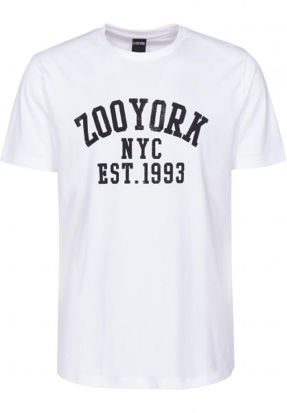 Zoo York T-Shirts Branch Arch white Vorderansicht