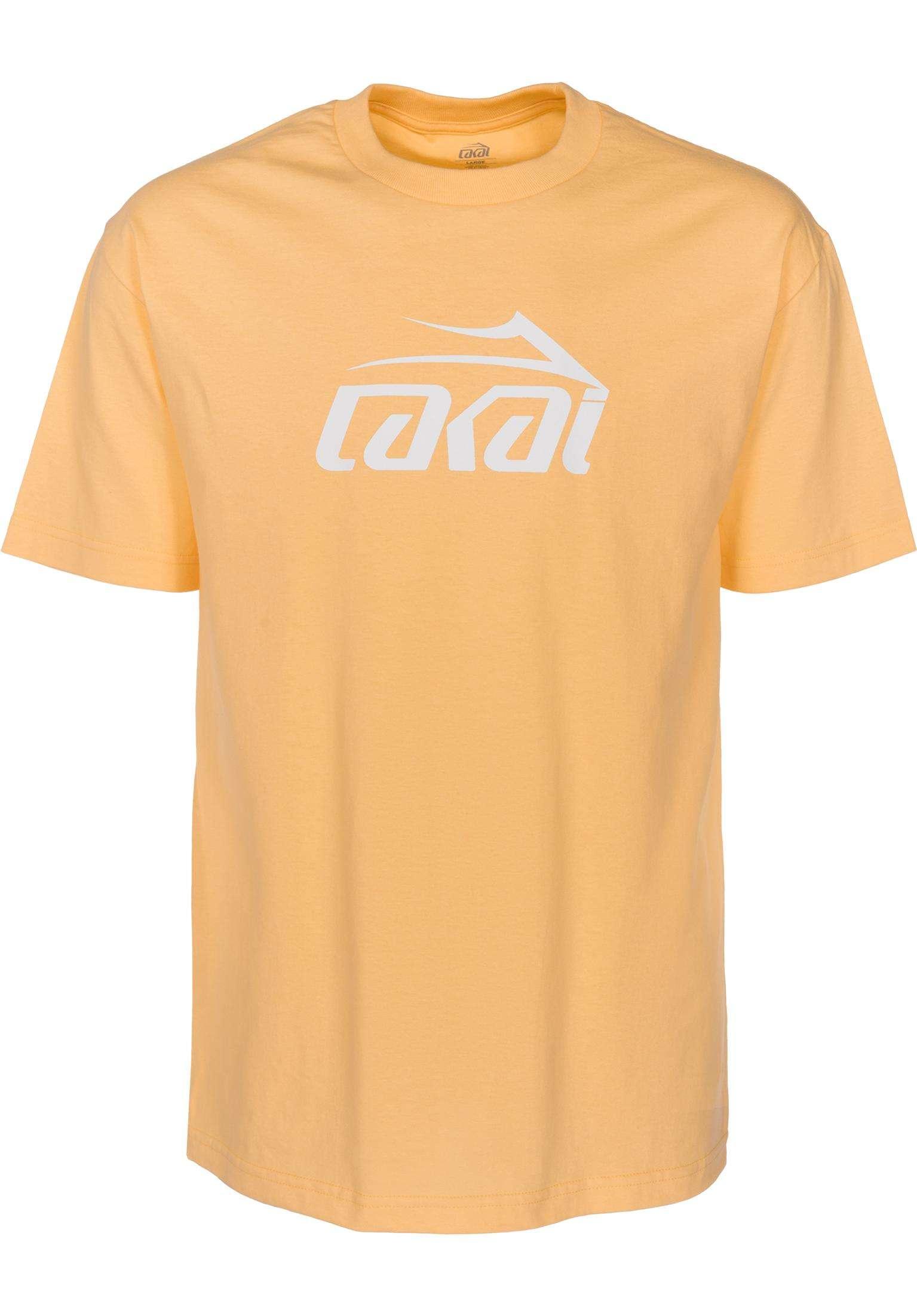 b03b3552b6 Basic Lakai T-Shirts in squash for Men