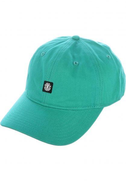Element Caps Fluky Dad Hat Cap dynastygreen vorderansicht 0565305