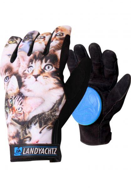 Landyachtz Handschoner Cat Pattern Freeride Slide Gloves cats-allover Vorderansicht