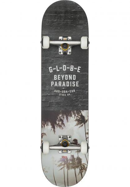 Globe Skateboard komplett Varsity 2 hawaii Vorderansicht