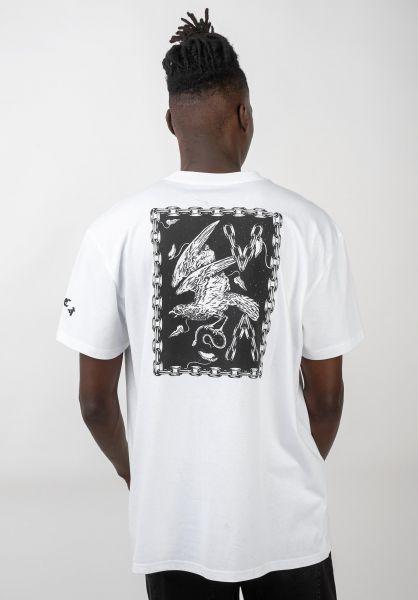 RVCA T-Shirts VA Eagle white vorderansicht 0320557