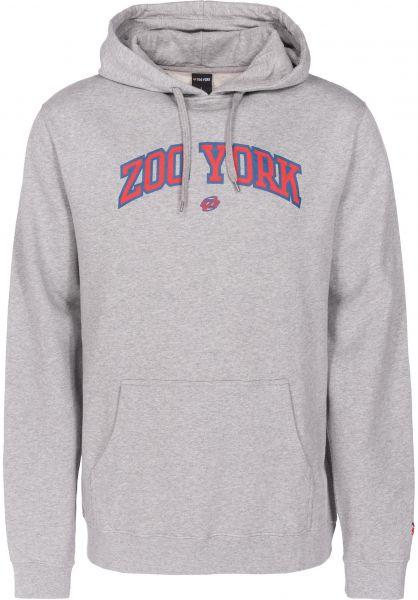 Zoo York Hoodies Ivy Arch heathergrey vorderansicht 0445117
