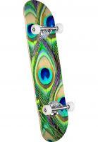 mini-logo-skateboard-komplett-fin-fur-feather-18-peacock-feather-vorderansicht-0162609
