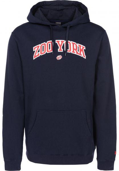 Zoo York Hoodies Ivy Arch navy vorderansicht 0445117