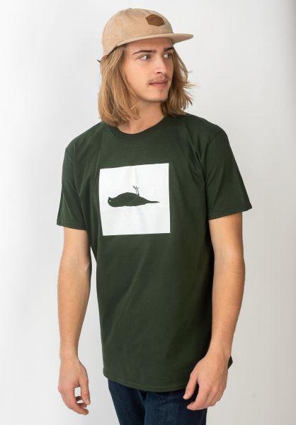 Atticus T-Shirts Box forrestgreen vorderansicht 0399861