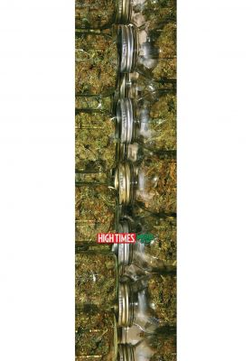 MOB-Griptape High Times Harvest