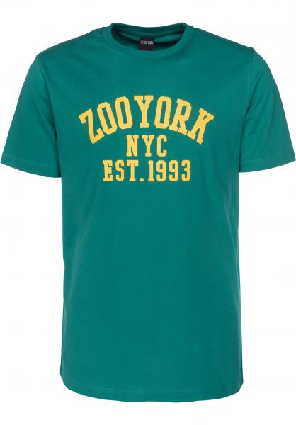 Zoo York T-Shirts Branch Arch huntergreen Vorderansicht